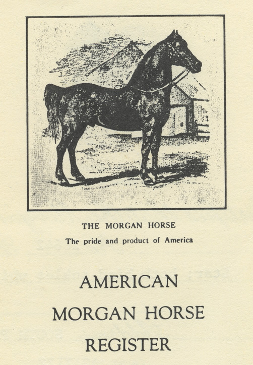 Depiction of Morgan horses at MAC