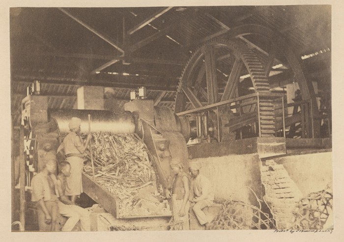 Caledonia Sugar Mill