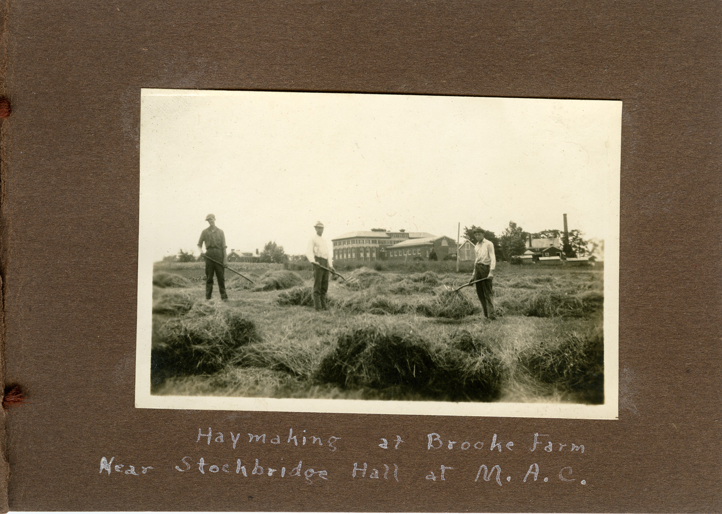 Image of Haying at MAC