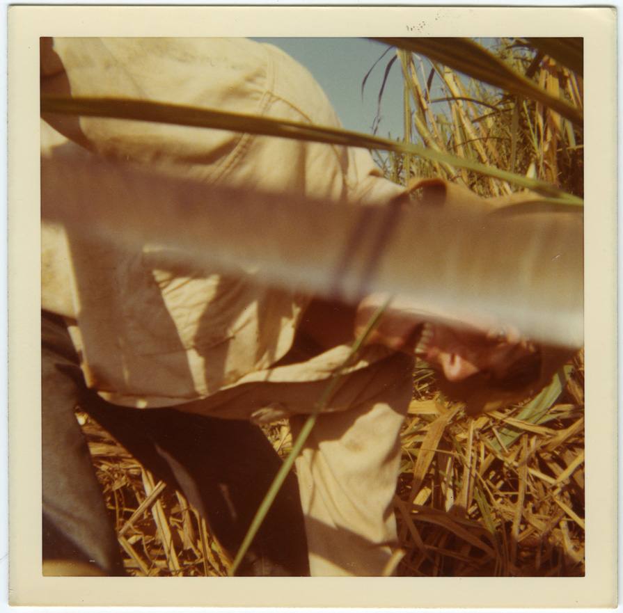 An image of: Jamie Lasalle, cutting cane