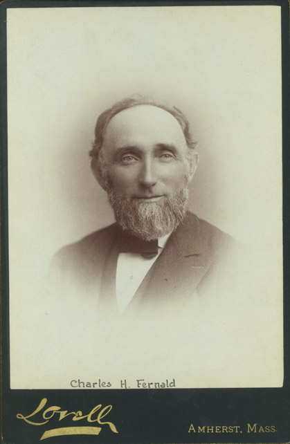Charles H. Fernald Papers image
