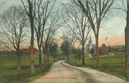 Image of MAC postcard