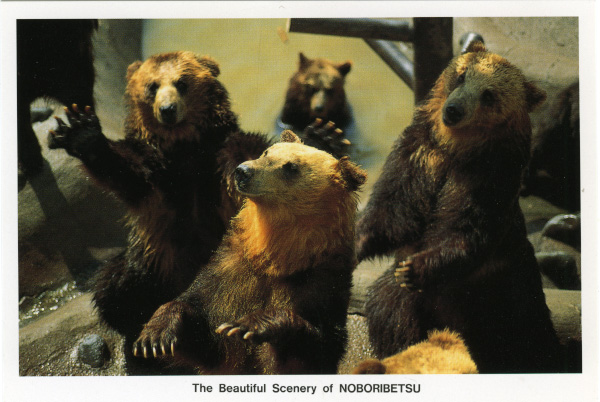 Depiction of Bears