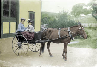 Two girls in carriage, Quabbin region, ca.1910