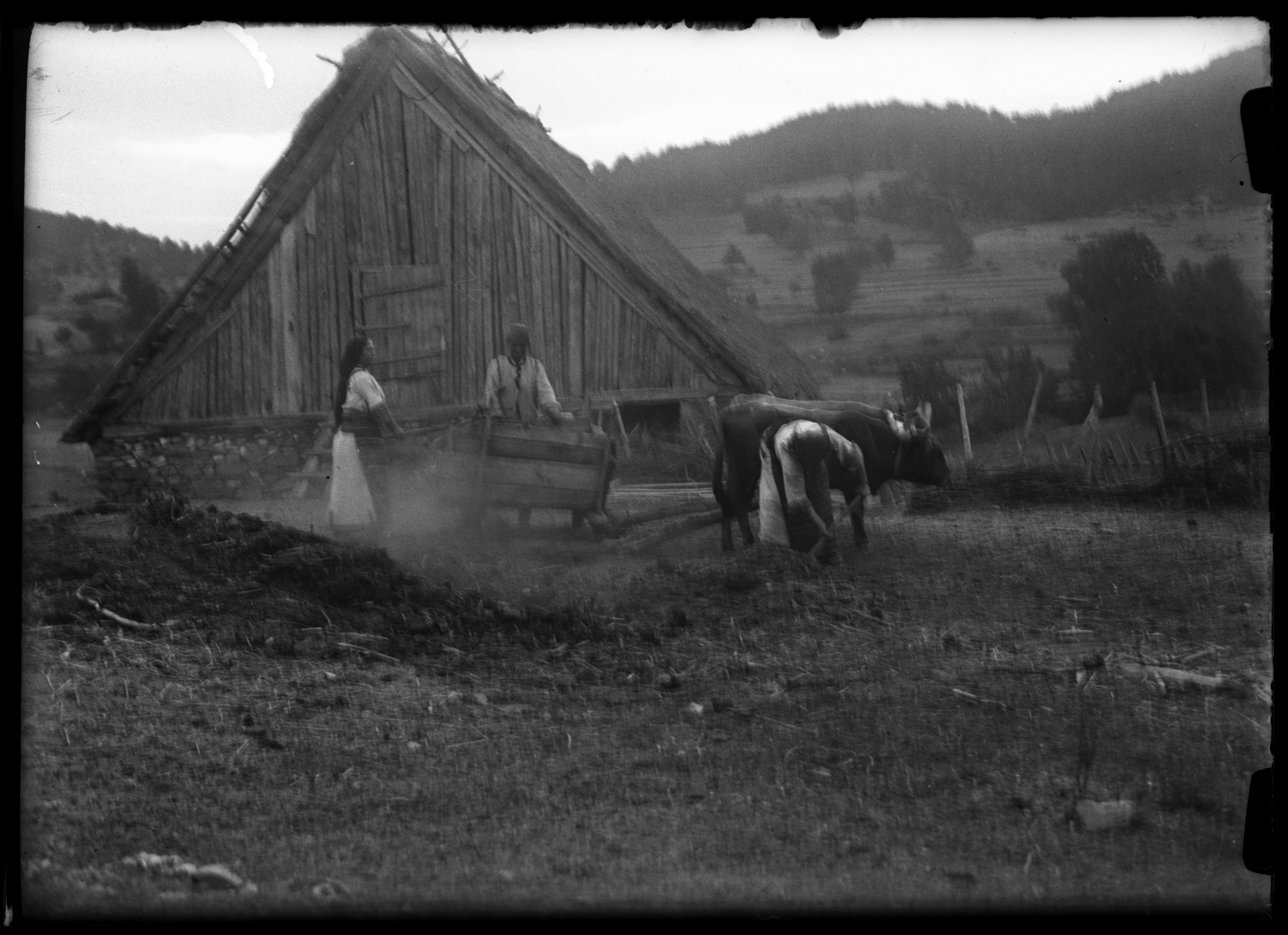 Carting fertilizer in Trebovle, Macedonia, 1932