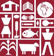 Center for International Education logo